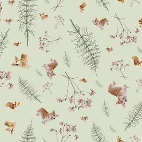 corgi botanics - pale green