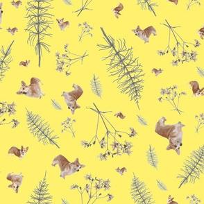 corgi and botanicals print - yellow