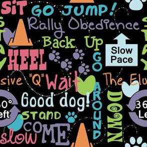 Rally Obedience Words