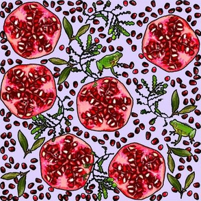 Pomegranate and Frog