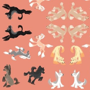 Chinese Crested Fabric - Coral