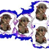 Rrrrrraustralia_-_baby_possum_ed_ed_ed_ed_ed_ed_ed_ed_ed_shop_thumb