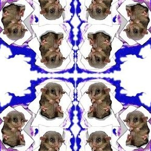 Possum Nursery
