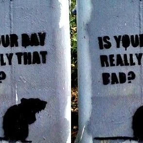 Rat Bad Day