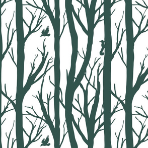Winter Forest Habitat