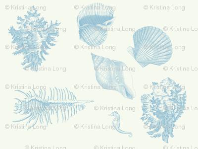 shells_delft_blue
