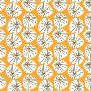 Dandelion orange