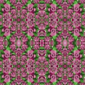 Bob's Roses