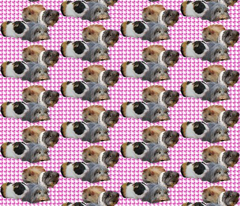 Rrr1303493_rrguinea_pig_fabric_shop_preview
