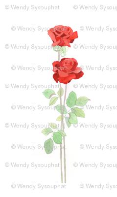 Roses 2012