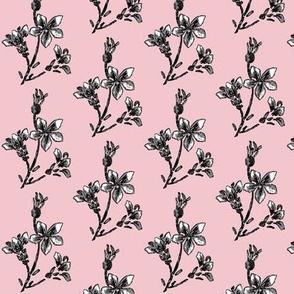 parisian jasmine twig