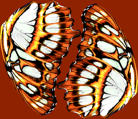 Pearl-bordered fritillary butterfly - Orange colorchange fabric by bonnie_phantasm on Spoonflower - custom fabric
