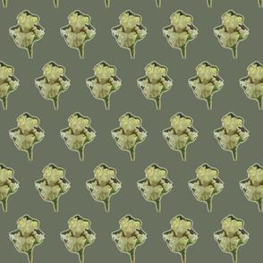 Green Iris