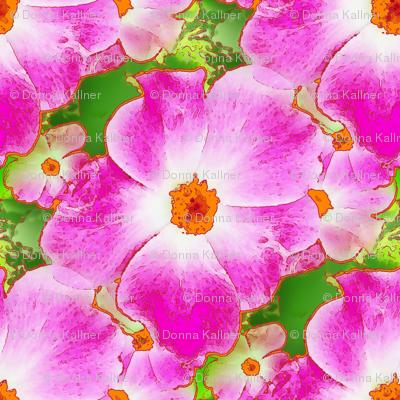Rose Prelude