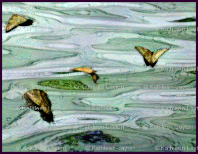 Butterflies__marblized_paint_effect