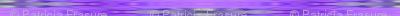 wet_violets