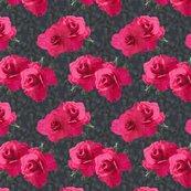 Rrrfour_q.e._roses_on_stoneworke_shop_thumb