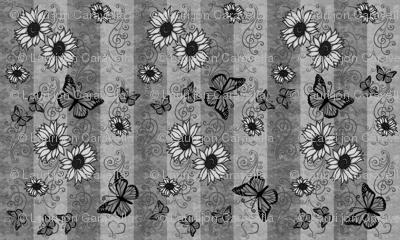 Sunflower Monarch Memories Gray