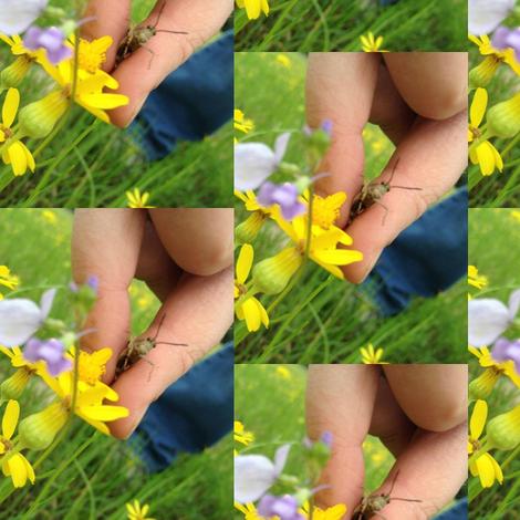 Grasshopper fabric by snickerslynn on Spoonflower - custom fabric