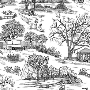 Austin Texas Toile, White