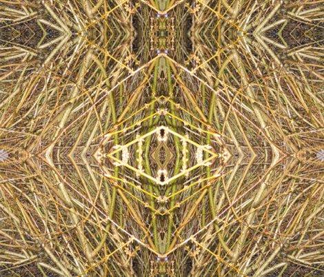 Rart-images_0109_shop_preview