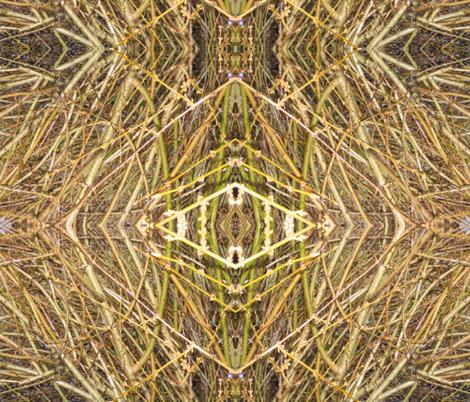 Bamboo Mandala fabric by zippyartist on Spoonflower - custom fabric