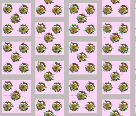 Lily_2 fabric by oceanpeg on Spoonflower - custom fabric