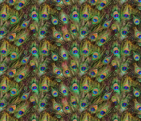 Peacock Feathers Invasion - Fans fabric by bonnie_phantasm on Spoonflower - custom fabric
