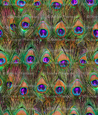 Peacock Feathers Invasion - Plane