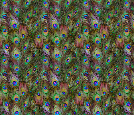 Peacock Feathers Invasion - Stripes fabric by bonnie_phantasm on Spoonflower - custom fabric