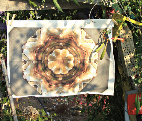Star of Translucent Onion (large scale design)