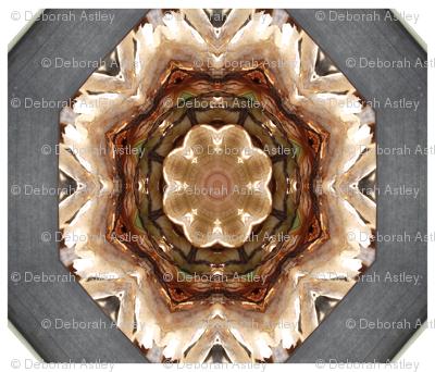 Star of Translucent Onion (large scale design)
