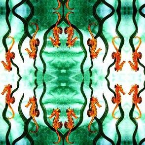 Seahorse_Triplets
