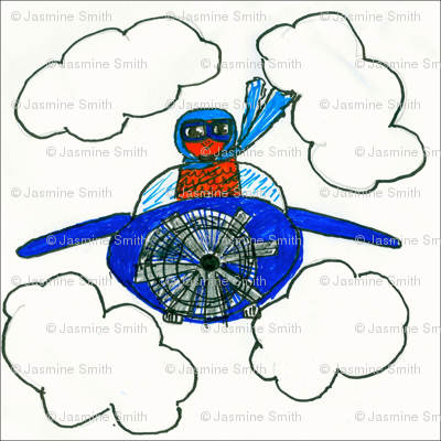 birdcopter