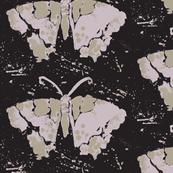 butterfly print black