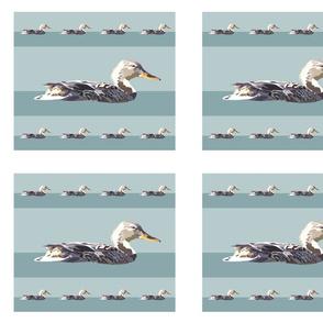Duck-Multiple-Andrea-Brand-42z36