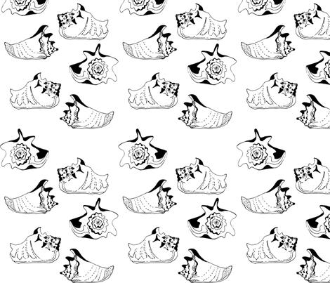 shells fabric by akwaflorell on Spoonflower - custom fabric