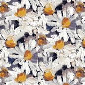 daisy garden-ch