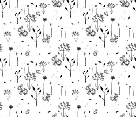 Rwildflower_on_white_shop_preview