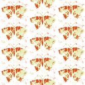 butterfly print black-ch