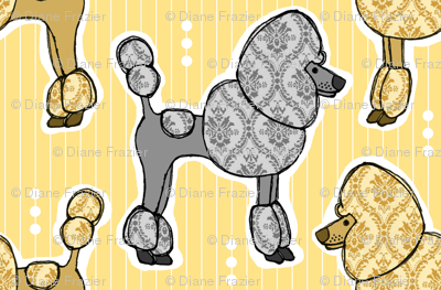 Prized Poodles - Sunshine & Pewter