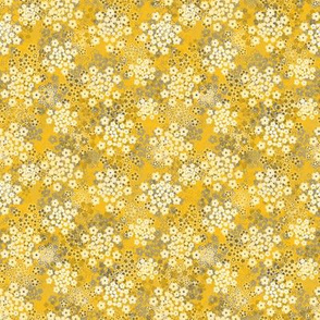 Verbena yellow
