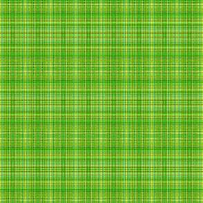 Camping green-yellow plaid