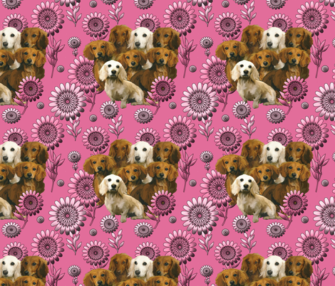 dachshunds and pink flowers fabric by dogdaze_ on Spoonflower - custom fabric