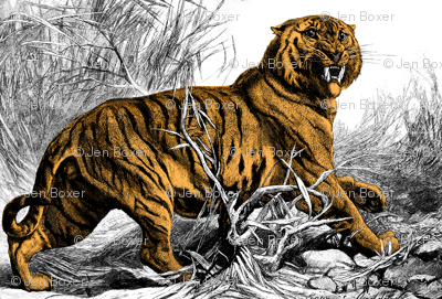 biggeroldtiger_coloured
