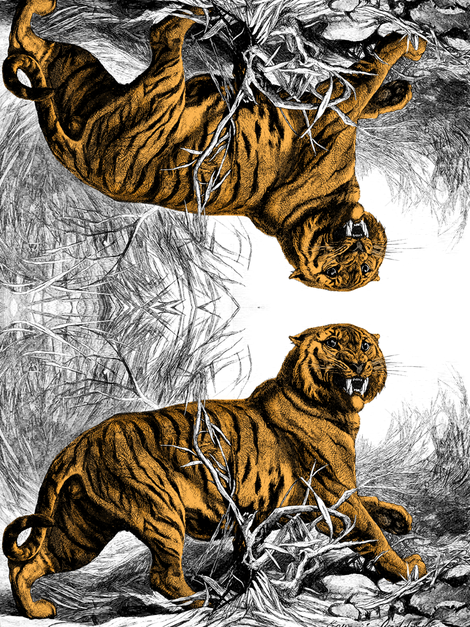 biggeroldtiger_coloured fabric by boxercox on Spoonflower - custom fabric