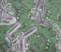 Rmicroscopefab_green_comment_198867_thumb