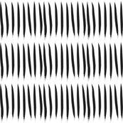 Rblack_tiger_stripes_on_white_3_shop_thumb
