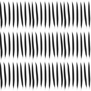 Black & White Tiger Stripes
