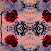 Coral Rose Kaleidoscope